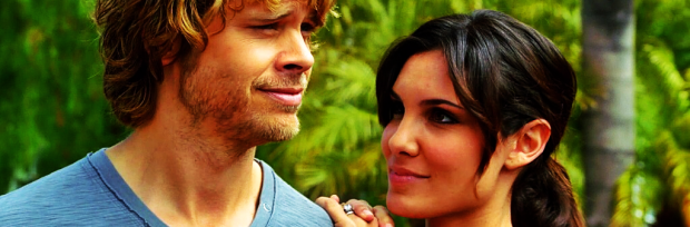 NCISLA Neighborhood Watch Densi feature